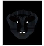 Carnicerías Juan Ortíz – Carnicería en Móstoles – Online Logo