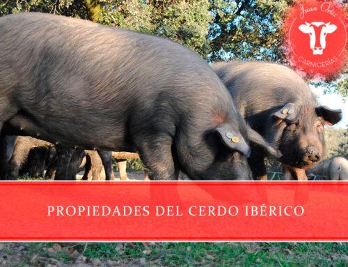 Propiedades del cerdo ibérico
